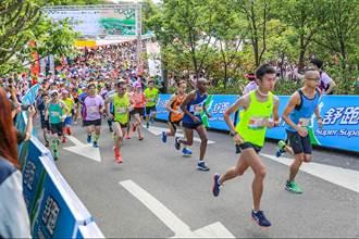 浪漫台三線「戀戀桐花」全國馬拉松15日開跑