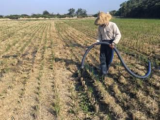 畜牧肥水變成寶!南市再利用突破百場