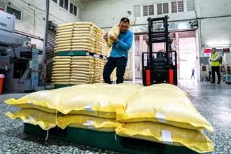通過611項檢驗 宜蘭米出口日本