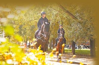 騎馬觀美景 北京開通城市馬道