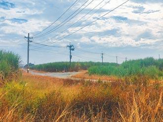 台南闢98公頃工業地 吸台商回流