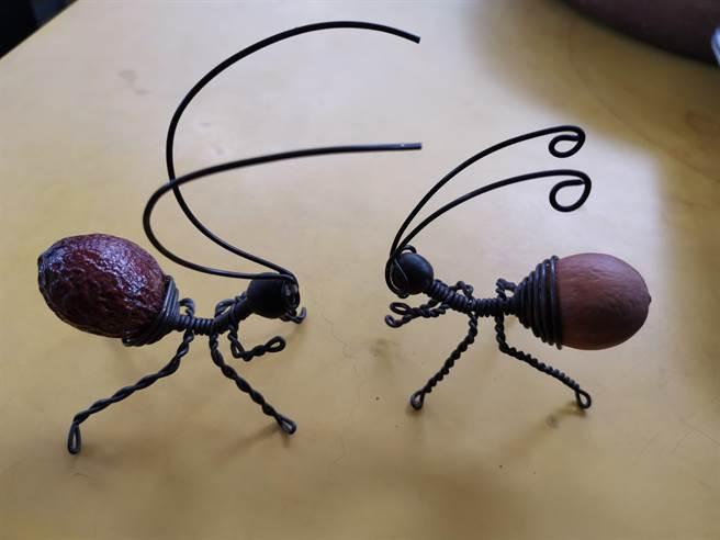 鄭美蓮以鐵樹種子做成可愛的紅螞蟻。(劉秀芬攝)