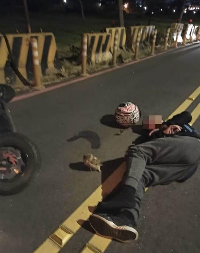 板橋一名機車騎士遭「不明飛行物」撞安全帽護目鏡,因而摔車,倒地後睜眼一看,「肇事者」竟然是一隻貓頭鷹。(翻攝照片/民眾提供)