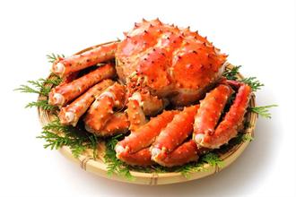 帝王蟹不是真正的螃蟹?親戚竟是體型小4倍的牠