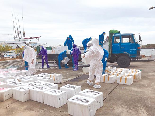 海巡署10日破獲一起大閘蟹走私案,查獲逾2000公斤大閘蟹,粗估市價逾500萬。(讀者提供/莊曜聰台南傳真)