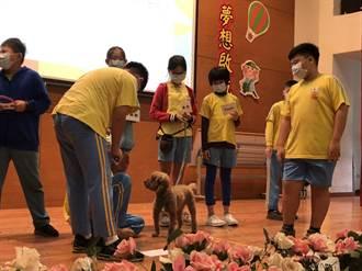中市動保深度教育課程  療癒犬當助教陪上課