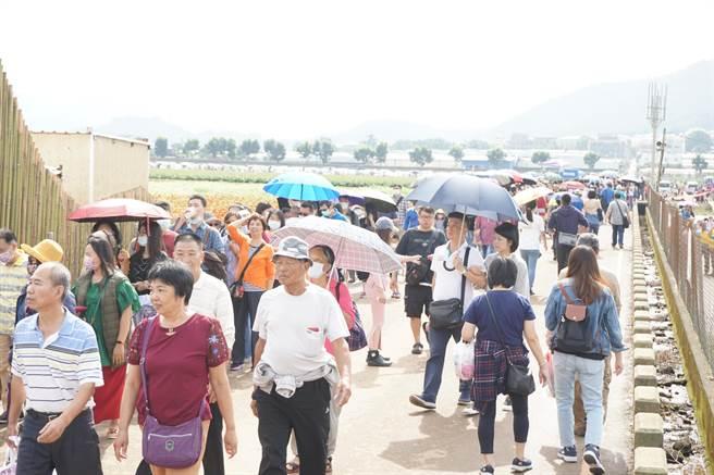 台中國際花毯節展區出現排隊人龍,一路綿延到停車場。(王文吉攝)