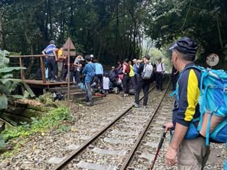 登山客頭部受傷倒在鐵軌旁 阿里山小火車緊急接駁送醫