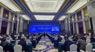 2020「台企台商荊楚行 共建兩岸合作區」在武漢隆重舉行