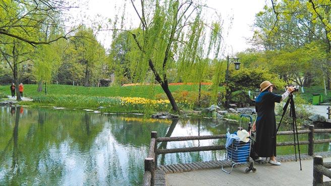 太子灣公園的自拍者,杭州。(作者提供)