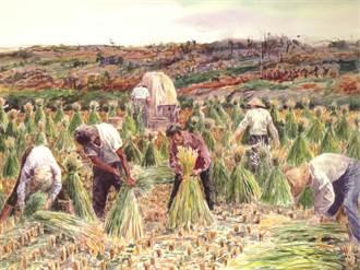公館鄉農會再現農村景象 將推擠福菜、紮稻草體驗
