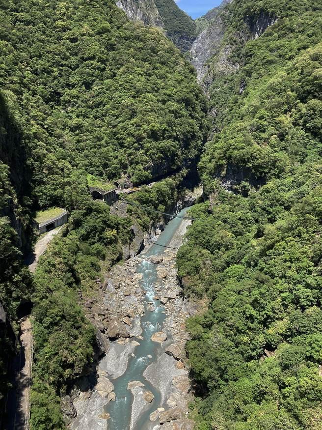 山月吊橋,距離溪谷153公尺,是太魯閣國家公園橫跨距離最長、和溪谷落差最大的吊橋!(太管處提供/王志偉花蓮傳真)