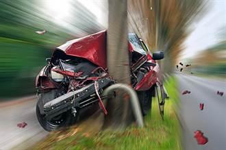 恐怖死亡之树!1个月内2次车祸 一家4口连续撞同棵树亡