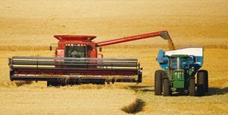 大陸飼料需求飛升 美農作物價漲逾3成