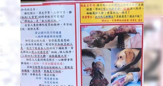 連知名的釋迦山佛寺養的巡山狗都難逃捕獸夾的傷害,氣的寺方設立告示要求民眾不得在附近擺售捕獸夾。(圖/民眾提供)