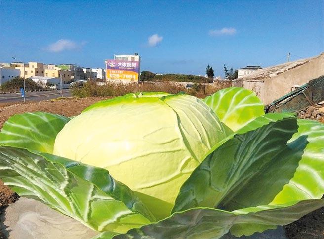 澎湖烏崁社區新地景藝術《巨人的高麗菜》很吸睛,打造觀光新意象打卡新亮點。(陳可文攝)