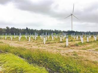 內政部簡化 5公頃以下海岸太陽光電設置審查程序