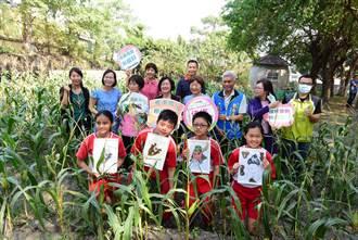 王惠美勘查食農教育成果 與孩子摘玉米做米漢堡