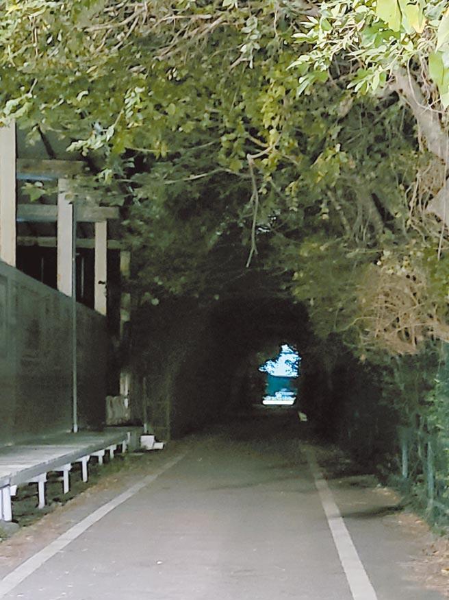 輕軌沙崙站外270公尺自行車道坑坑巴巴,還未設路燈,民眾憂心發生不幸事件。(鄭宇恩提供/戴上容新北傳真)