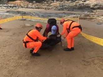 今年第18起 金門又發現死亡鯨豚
