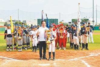 中信盃棒球賽 三星國小首度奪冠