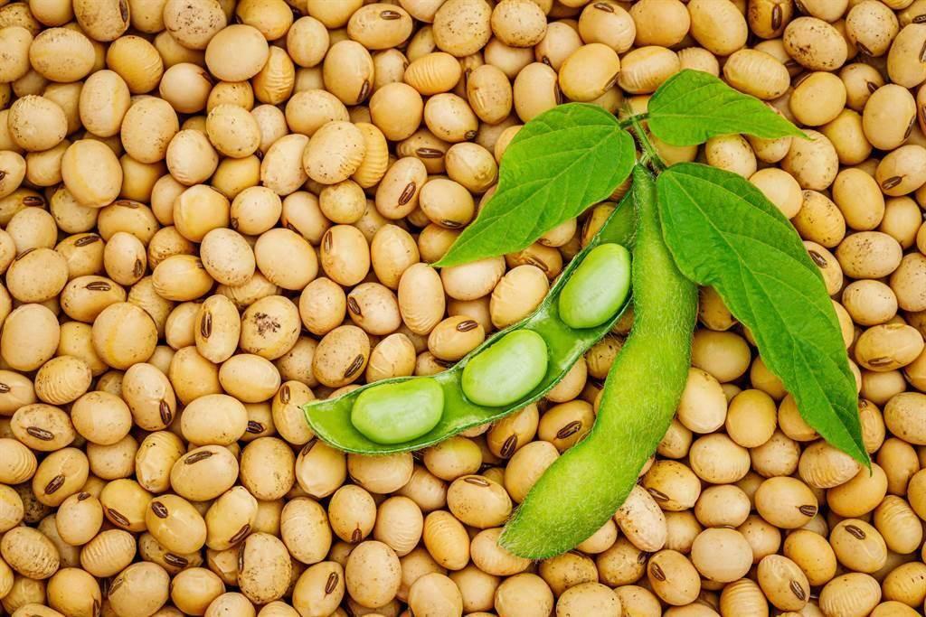 食藥署9月啟動「109年豆製品製造業稽查專案」,針對國內53家豆製品製造業進行稽查。(示意圖,達志影像shutterstock)