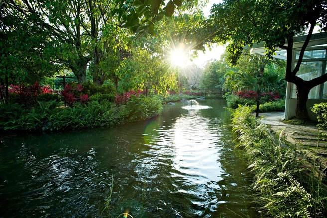 犹如「亚马逊森林中的饭店」,其生态园区拥有舒适宜人的自然景观。(日晖国际渡假村提供)。(日晖国际渡假村提供)