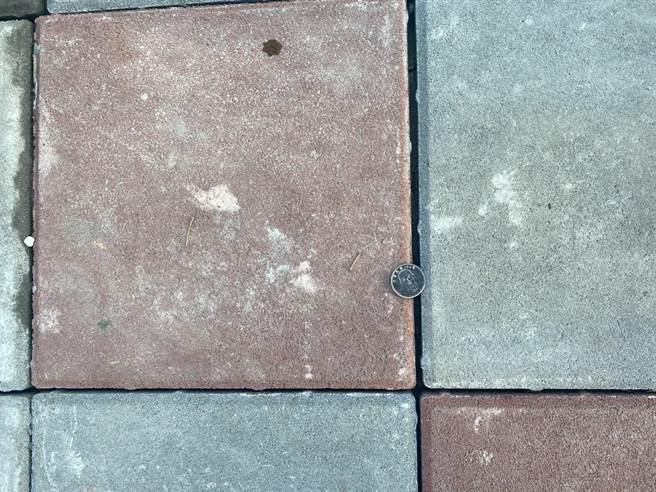 北市內湖大湖社區入口人行道日前才更新完成,但議員李明賢卻發現,地磚幾乎沒有密合。(李明賢提供/張穎齊台北傳真)