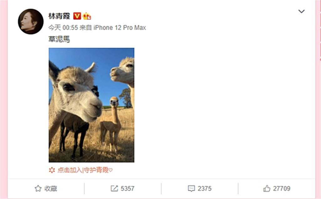 林青霞寫下「草泥馬」,笑翻網友。(圖/翻攝自林青霞微博)