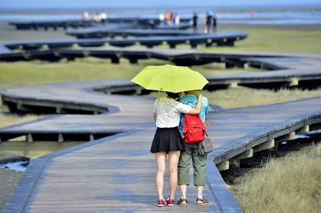清水高美濕地被國際媒體讚譽為一生一定要去的絕景。(台中市觀旅局提供/王文吉台中傳真)