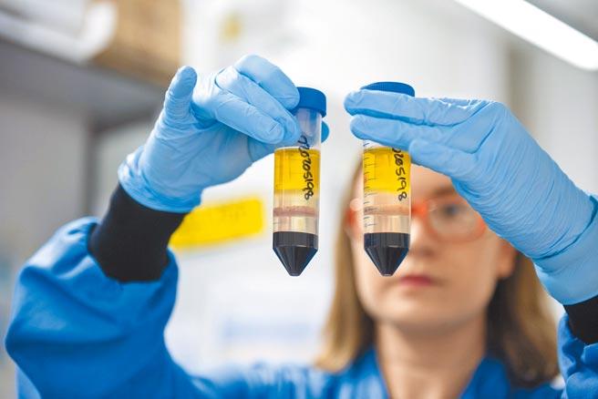 牛津大學所研發的新冠肺炎疫苗,為我國選購疫苗之一。圖為英國牛津詹納研究所實驗室研究員,正在研究阿斯利康和牛津大學開發的冠狀病毒疫苗。(美聯社)