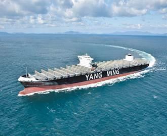 貨櫃航運大浪來了 謝金河爆好友空降意外坐在浪頭