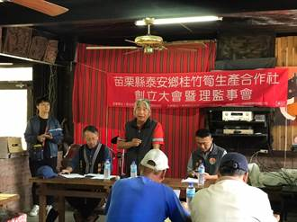推動泰安桂竹筍自有品牌 梅園部落成立生產合作社
