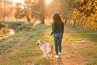 狠媽帶愛犬離家8天 丟10歲兒在家啃生米
