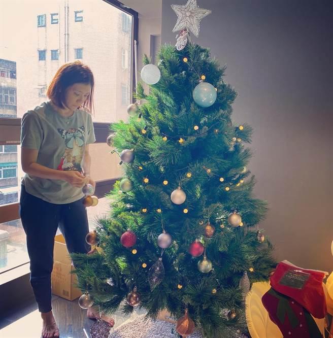 許多養貓的網友預言聖誕樹會倒。(圖/FB@賈靜雯)