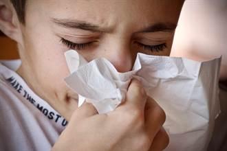 鼻過敏、感冒怎麼分? 注意這4大症狀