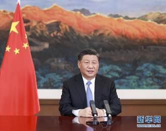 第17屆「中國—東盟博覽會」開幕 習近平提4倡議