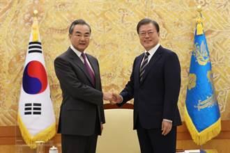 王毅訪韓之際 文在寅特助多方示好:韓日合作調停中美冷戰