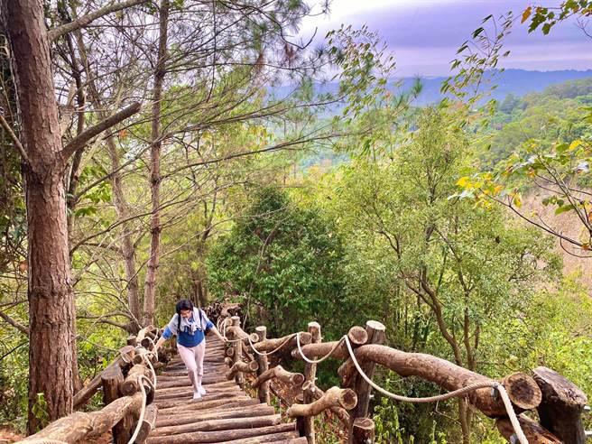 大坑3號步道海拔介於415至795公尺,大多行經山稜線上,風景秀麗。(台中市觀旅局提供/王文吉台中傳真)