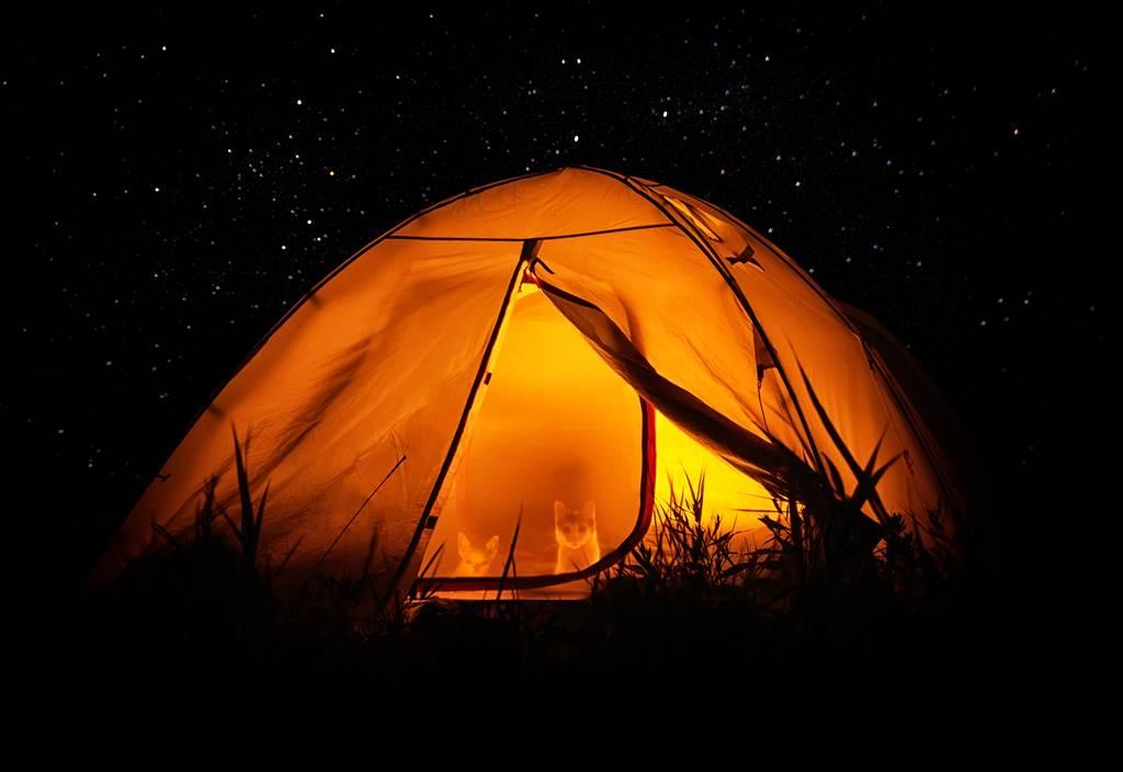 網友日前到野外露營,半夜卻有重物壓腳,讓他非常害怕(示意圖/達志影像)