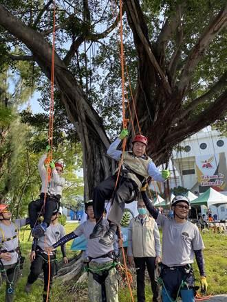 黃偉哲汗流浹背攀樹2公尺贏過柯P 籲重視樹木保育