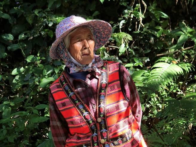 YAYA葉羅月英已屆70歲,以泰雅族語敘述族人生活智慧,也通過導覽解說員的認證。(圈谷資訊公司提供/莊旻靜新竹傳真)