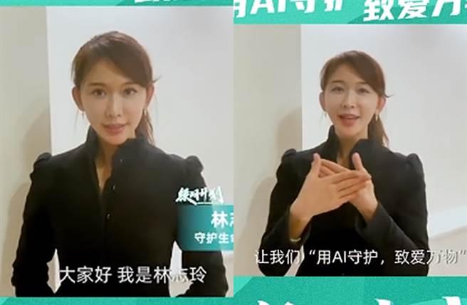 林志玲今分享力挺公益活动影片。(图/翻摄自林志玲微博)