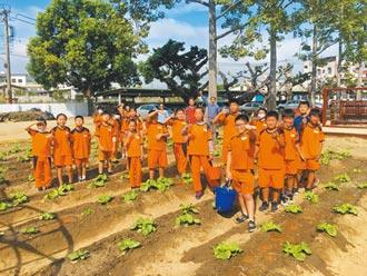 苗栗學童種菜除草 食農教育從小扎根