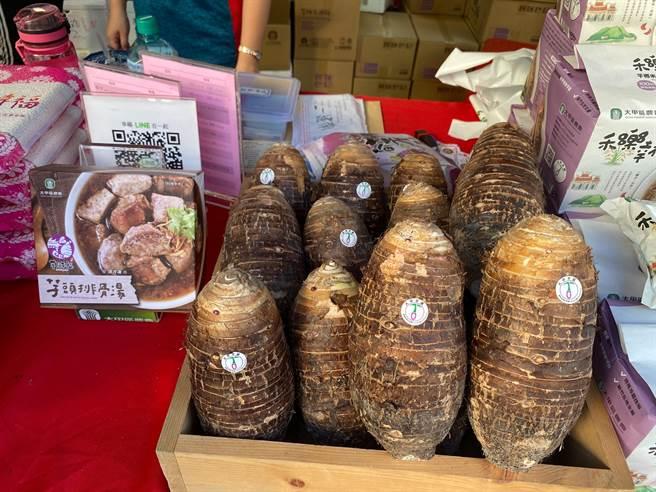 大甲芋頭品質好、口感香鬆綿密,產季從8月至隔年4月(台中市農業局提供/王文吉台中傳真)