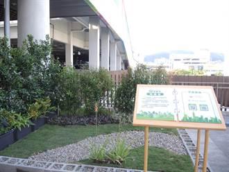 大安森林公園綠屋頂展示區開幕 邀民眾享受農耕綠生活