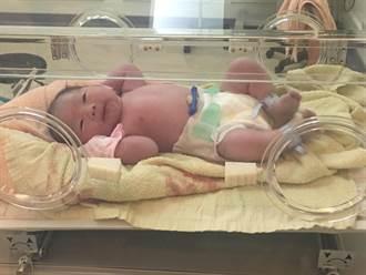 39歲婦植入「鑲嵌型」胚胎最終孕育為健康胎兒