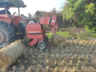 稻草打包成捆再利用 不焚燒免空汙更有田園風情
