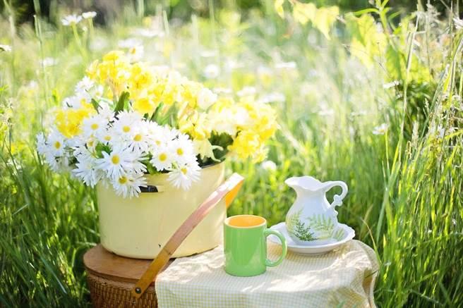 研究指出,患有第2型糖尿病、並且喜歡喝綠茶或咖啡的患者,或許可以降低過早死亡的風險。(示意圖/Pixabay)