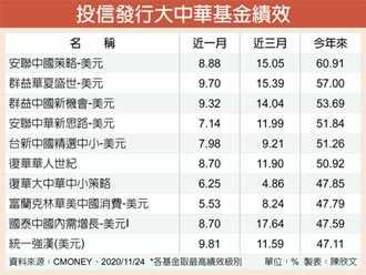 大中華基金 今年績效居冠